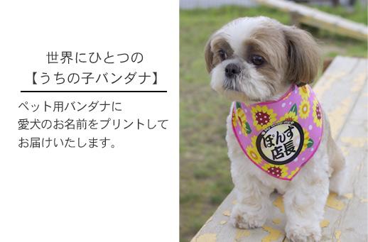 ペット用名前入りバンダナ(犬・猫用)