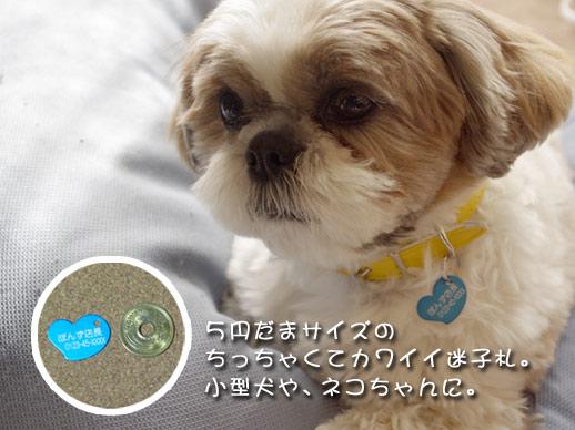 小型犬・猫用の迷子札、ハート型
