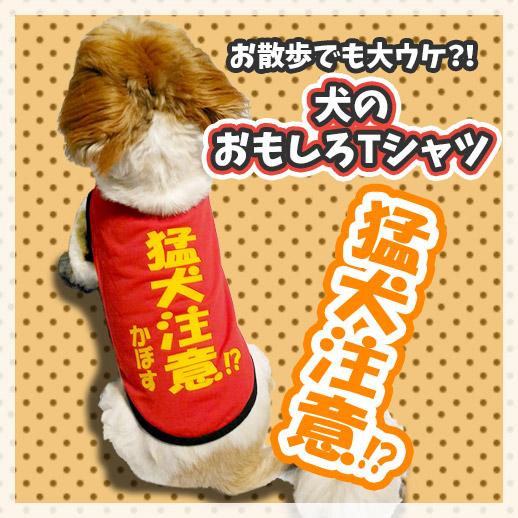 猛犬注意!?犬用ネタTシャツ
