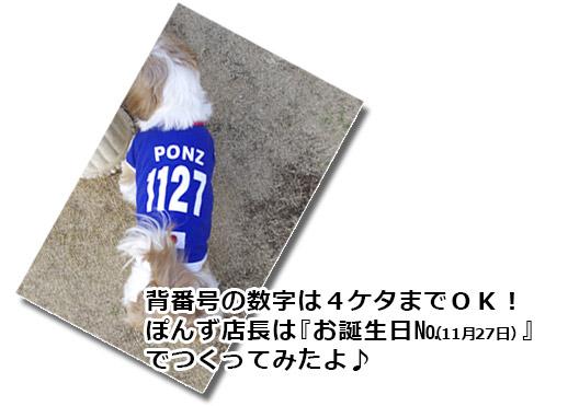 サッカー日本代表、名前&背番号入り犬用ユニフォーム