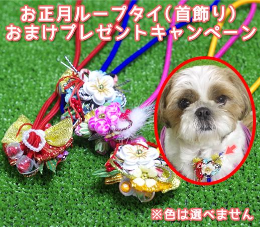 ペット用お正月用飾りプレゼントキャンペーン