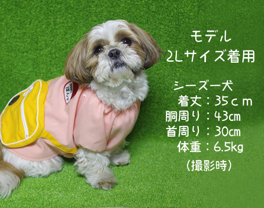 犬の服『幼稚園コスチューム』